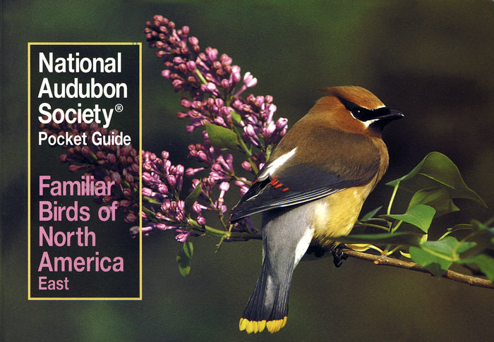 National Audubon Society Pocket Guide to Familiar Birds: Eastern Region