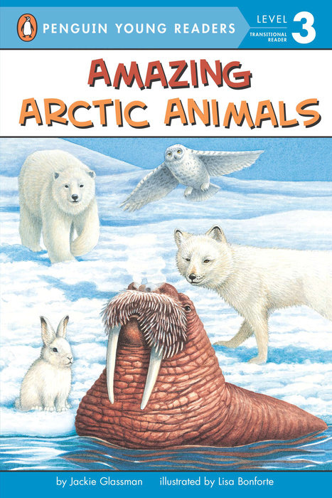 Amazing Arctic Animals