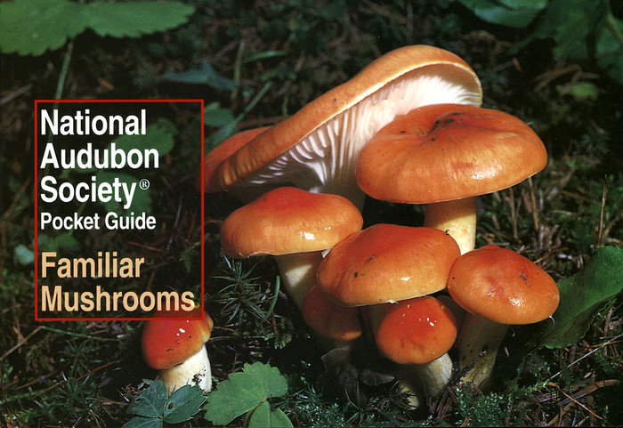 National Audubon Society Pocket Guide: Familiar Mushrooms