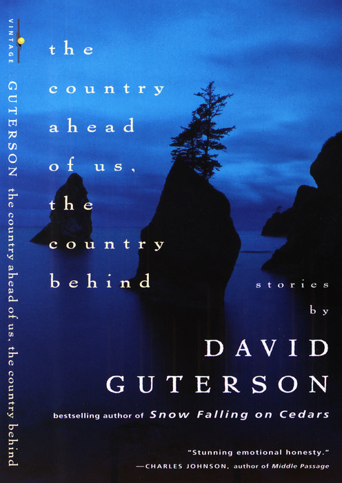 The Country Ahead of Us, The Country Behind