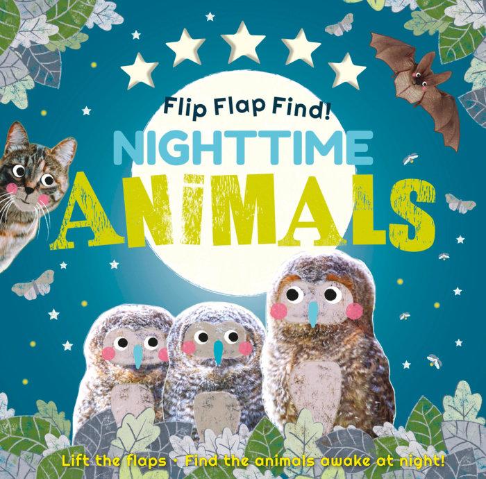 Flip Flap Find Nighttime Animals