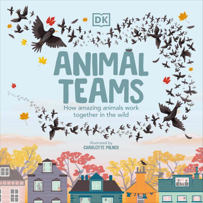 Animal Teams
