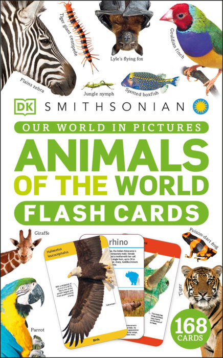 Our World in Pictures Animals of the World Flash Cards