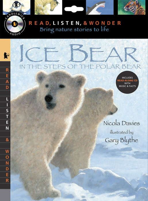 Ice Bear with Audio, Peggable