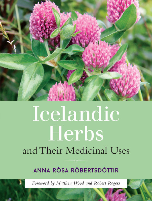 Icelandic Herbs and Their Medicinal Uses