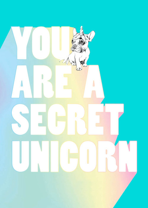 You Are a Secret Unicorn (Journal)