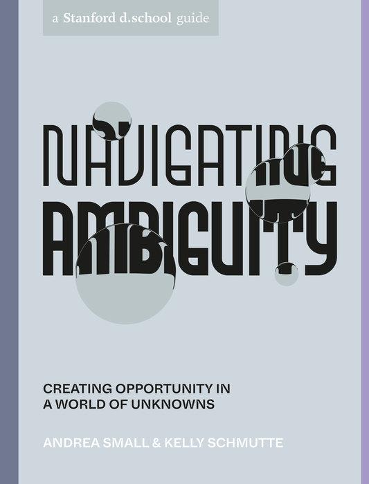 Navigating Ambiguity