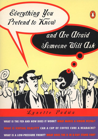 Everything You Pretend to Know And Are Afraid Someone Will Ask