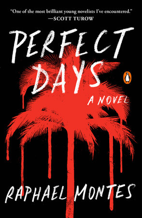 Perfect Days book cover