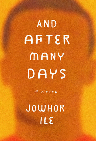 And After Many Days book cover