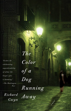 The Color of A Dog Running Away by