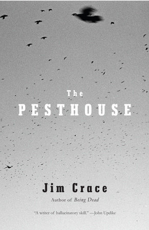 The Pesthouse by