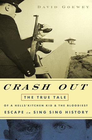 Crash Out by David Goewey