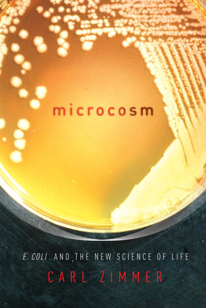 Microcosm by