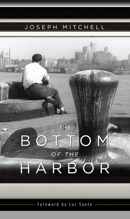 The Bottom of the Harbor by