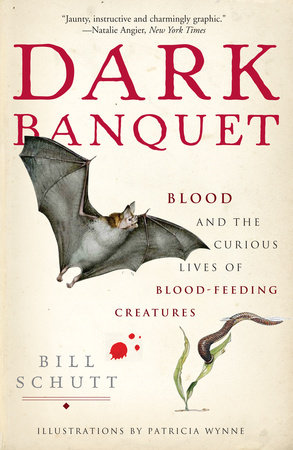 Dark Banquet by