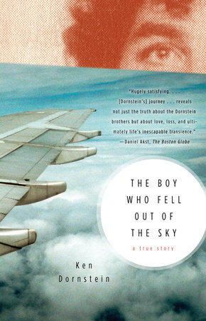 The Boy Who Fell Out of the Sky by