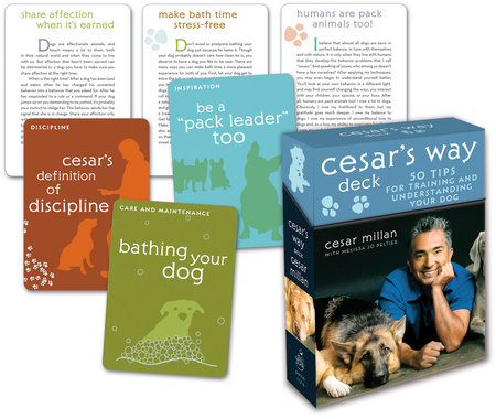 Cesar's Way Deck by Cesar Millan