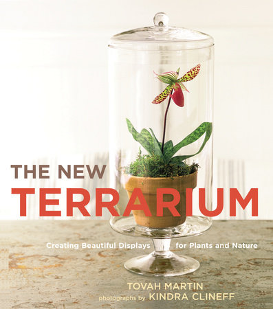 The New Terrarium by