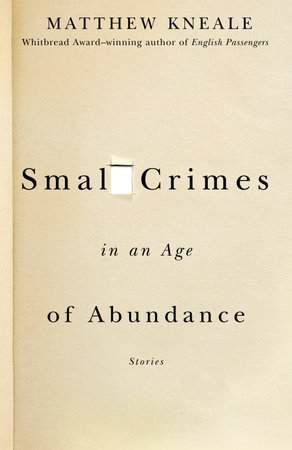 Small Crimes in an Age of Abundance by