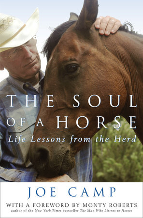 The Soul of a Horse by