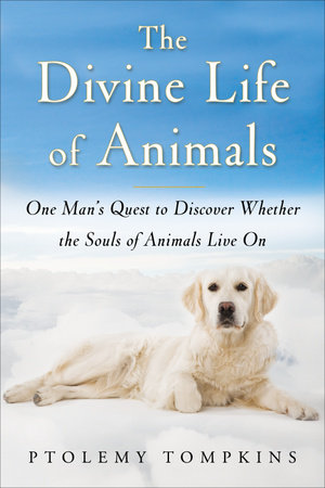 The Divine Life of Animals