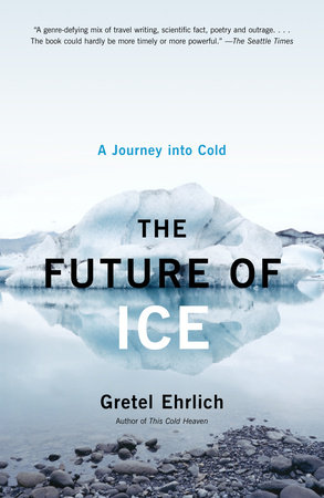 The Future of Ice by