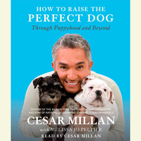 How to Raise the Perfect Dog by
