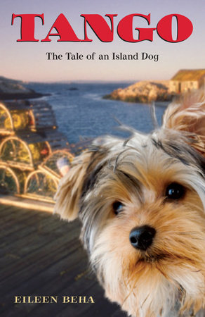 Tango: The Tale of an Island Dog by Eileen Beha