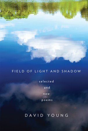 Field of Light and Shadow by David Young