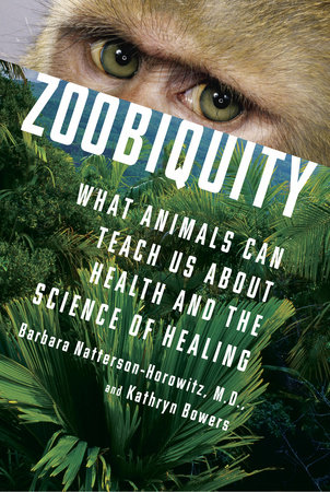 Zoobiquity by