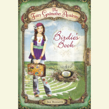 The Fairy Godmother Academy #1: Birdie's Book Cover