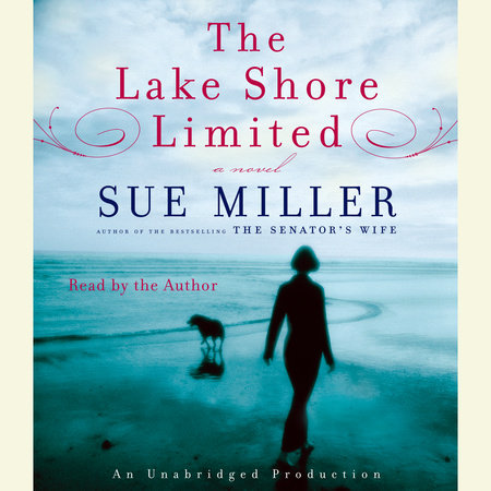 The Lake Shore Limited by