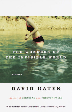 The Wonders of the Invisible World
