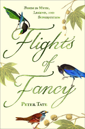 Flights of Fancy by Peter Tate