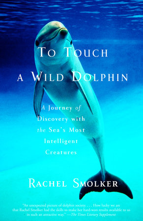 To Touch a Wild Dolphin by