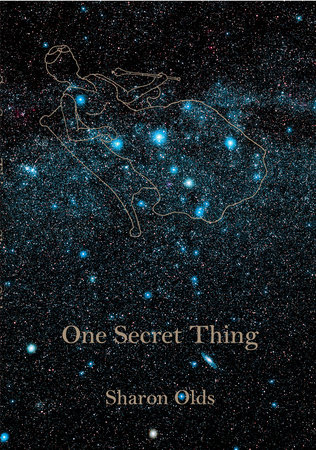 One Secret Thing by