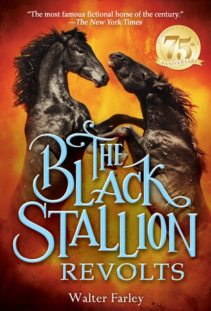 The Black Stallion Revolts