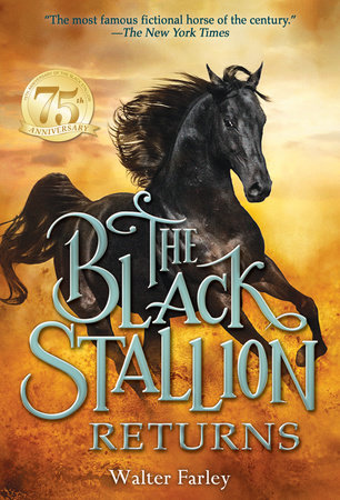 The Black Stallion Returns by