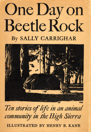 One Day On Beetle Rock by Sally Carrighar