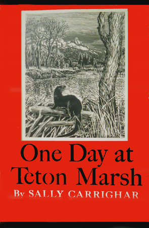 One Day At Teton Marsh by