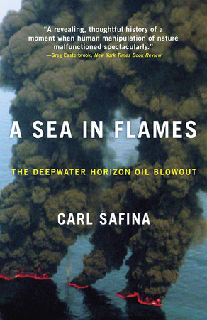 A Sea in Flames by