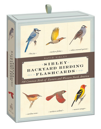 Sibley Backyard Birding Flashcards by