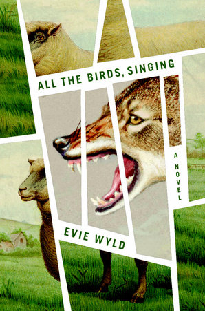 Cover art for All the Birds, Singing