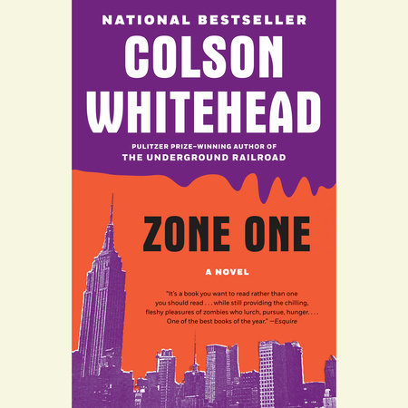 Zone One book cover
