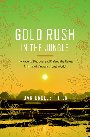 Gold Rush in the Jungle by