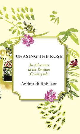 Chasing the Rose by