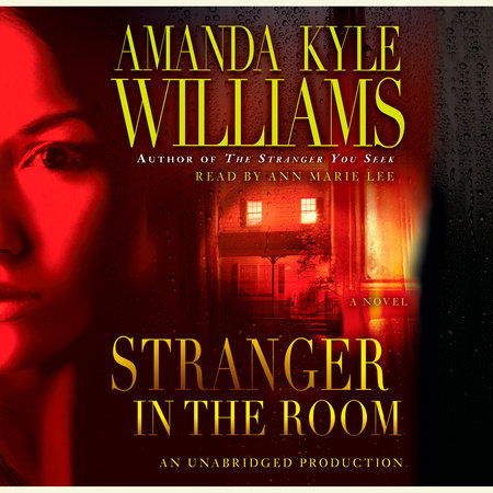 Stranger in the Room by Amanda Kyle Williams