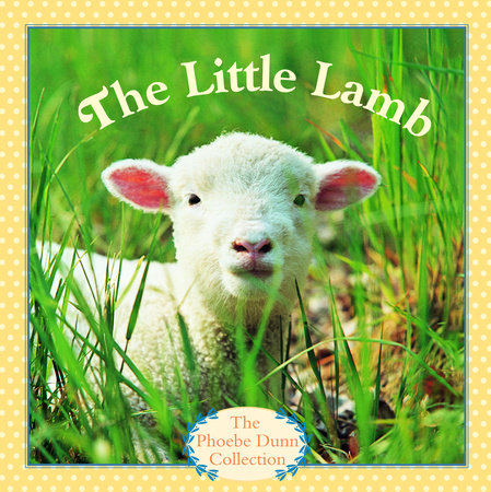 The Little Lamb by
