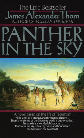 Panther in the Sky by